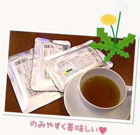タンポポ茶 ショウキT-1Plus